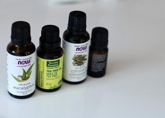 Aceite esencial árbol del té